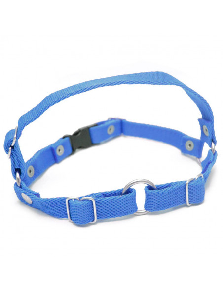 Arnes anti tirones (Simil Easy Walk) 2 cm Azul