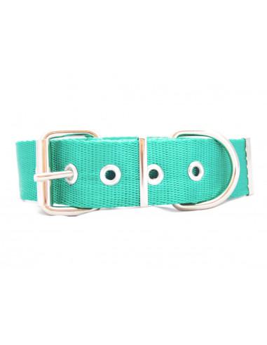 Collar Perro Liso  4 cm Verde