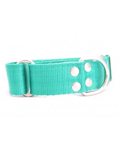 Collar Perro Galgo Martingale 4 cm Verde