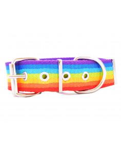 Collar Perro Rainbow 4 cm