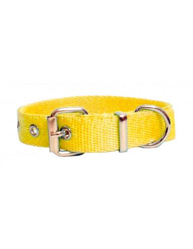 Collar Perro  Liso 2 cm Amarillo