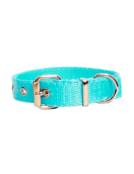 Collar Perro  Liso 2 cm Celeste