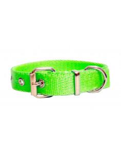 Collar Perro  Liso 2 cm Manzana