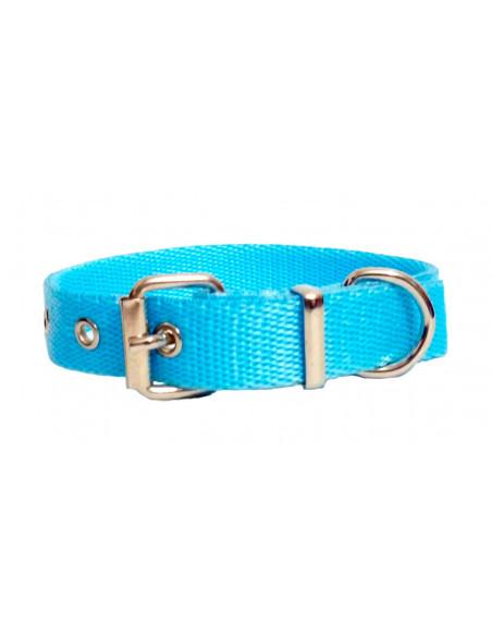 Collar Perro  Liso 2 cm Turquesa