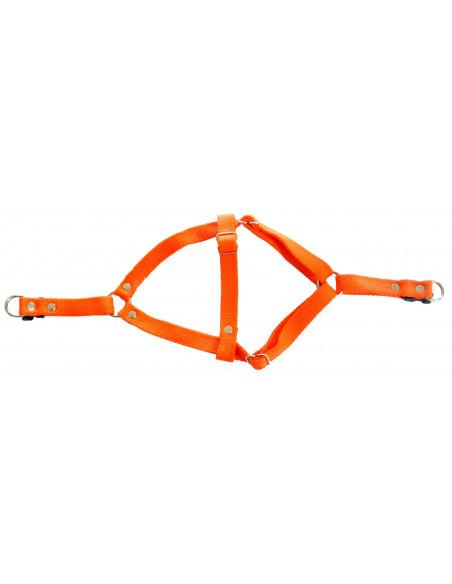 Arnes Perro Liso  2 cm Naranja