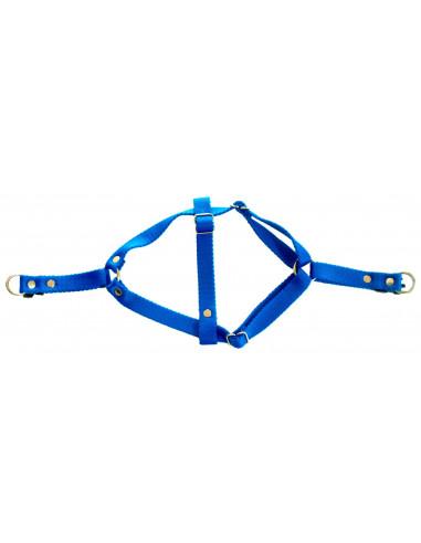 Arnes Perro Liso  2 cm Azul
