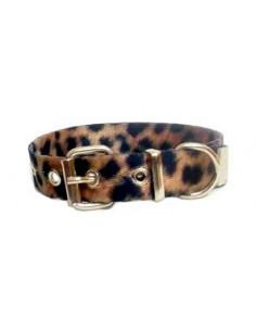 Collar Perro Leopardo 2 cm