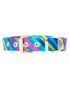 Collar Perro Rayas Diagonal 2 cm Azul