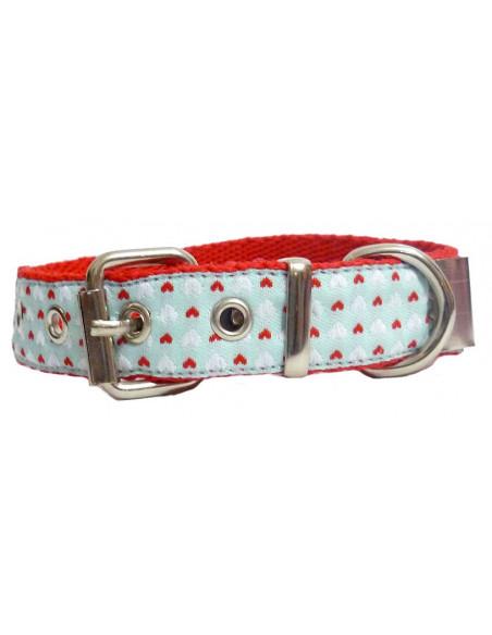 Collar Perro SkyBlue 2 cm