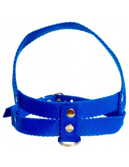 Pretal Perro Liso 2,5 cm Azul