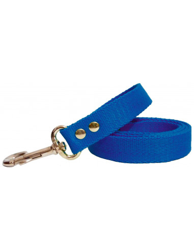 Correa Perro Lisa 2,5 cm  Azul