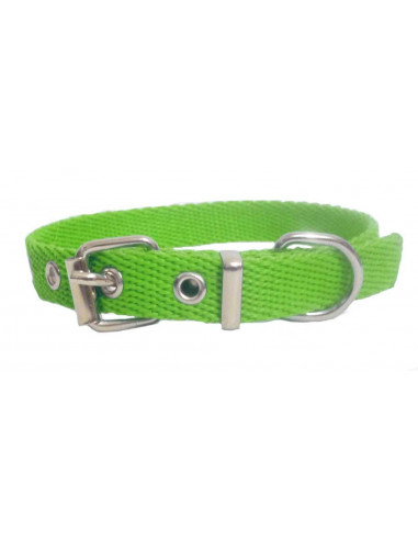 Collar Perro Liso 1,5 cm Manzana