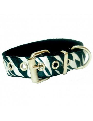 Collar Perro CebraSub 2,5 cm Blanco