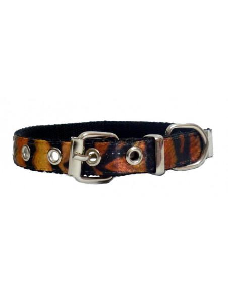 Collar Perro Tigre 2,5 cm
