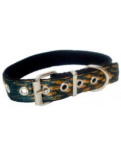 Collar Perro Piton 2,5 cm