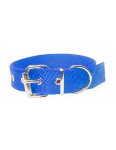 Collar Perro Liso 3 cm  Azul