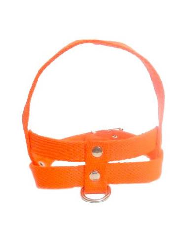 Pretal Perro Liso 3 cm Naranja