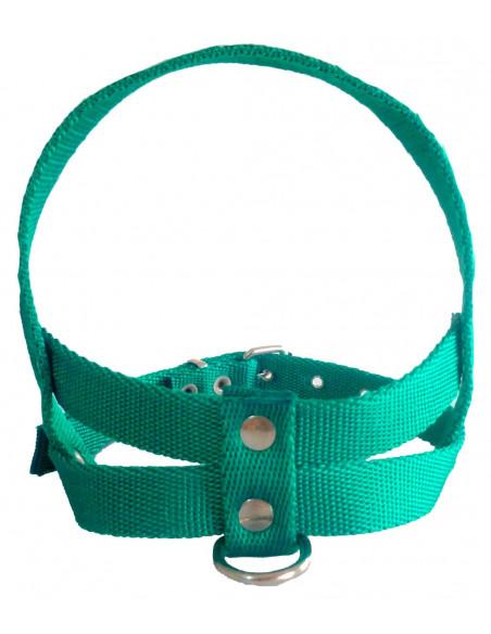 Pretal Perro Liso 3 cm Verde