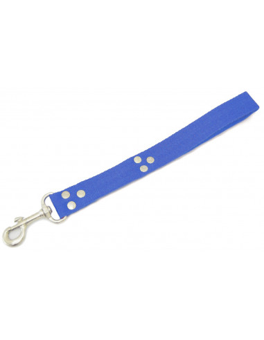 Manopla Perro Liso 3 cm Azul