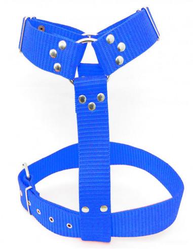 Pechera Perro Militar 3 cm Azul