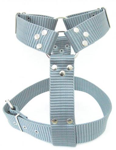 Pechera Perro Militar 5 cm Gris