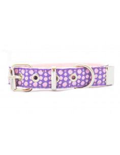 Collar Perro Stain 2 cm